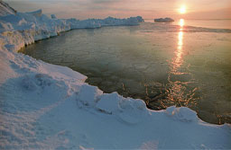 Grupo de jovens russos descobriu a nova ilha no arquipélago de Nova Zembla. Foto: Sputnik/ Alexander Liskin