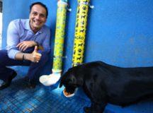 Feitos de maneira sustentável, equipamentos contém ração e água para animais comunitários. Foto: Roberto Mourão/PMM