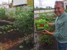 Com uma horta de 250m² no quintal, Madruga e sua família se alimentam de produtos que cultivam. Foto: Divulgação