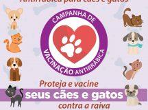 Ribeirão Pires inicia campanha de vacinação antirrábica dia 4